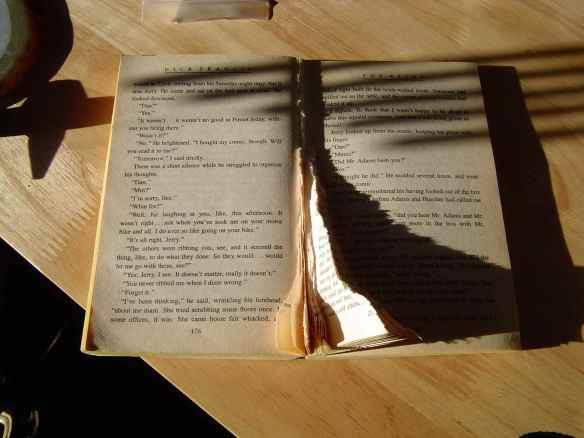 torn_book