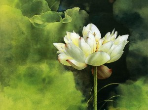 brush-painting-water-lily