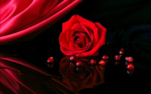 3d-abstract_widewallpaper_red-rose_26213